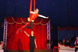 Projekt-Circus-Casselly